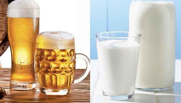 Gội đầu bằng bia và sữa tươi dưỡng tóc hiệu quả