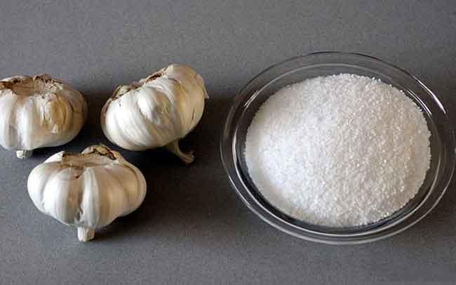 Cách diệt chấy bằng muối và tỏi