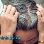 Cách chữa tóc bạc sớm bằng hà thủ ô