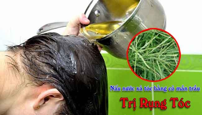 Cách nấu nước trị rụng tóc bằng cỏ mần trầu