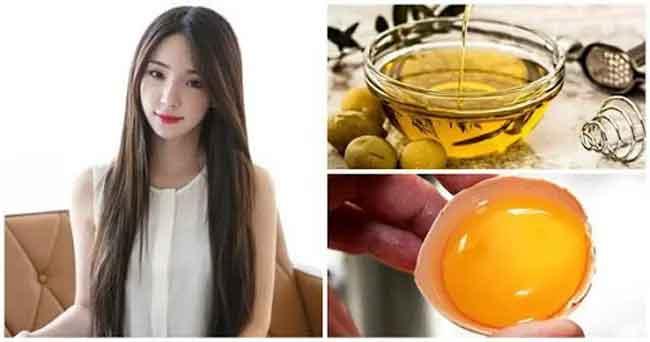 Công thức ủ dưỡng tóc bằng dầu oliu và trứng gà