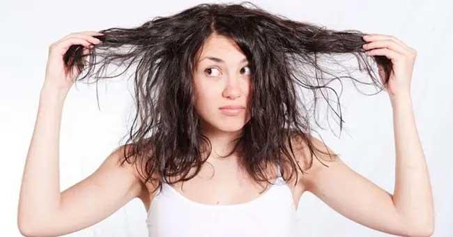 Top 3 dầu gội cho tóc dầu thành phần chiết xuất tự nhiên